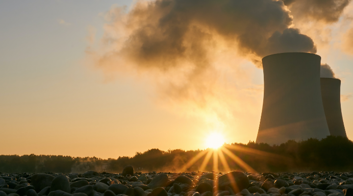 Nuclear Cogeneration and Net Zero